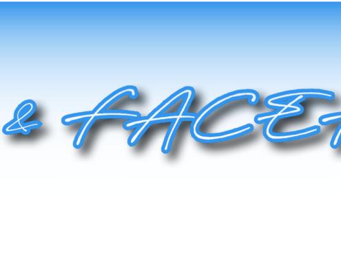 Neue Aidoo Schnittstelle zu FACEFORCE 7